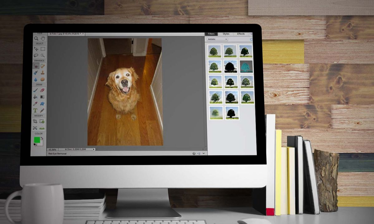 adobe photoshop elements 11 guide